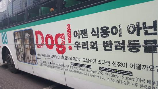 ▲ 개 식용 반대 광고를 부착한 버스. 이승훈 인턴기자 hun@kihoilbo.co.kr