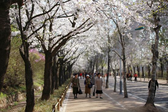 인천대공원.jpg