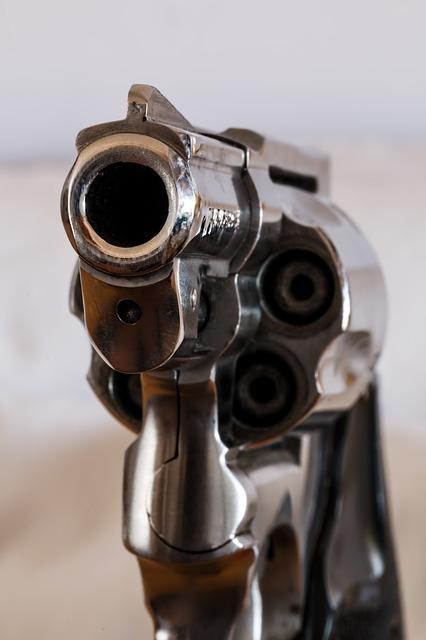 firearm-409000_640.jpg