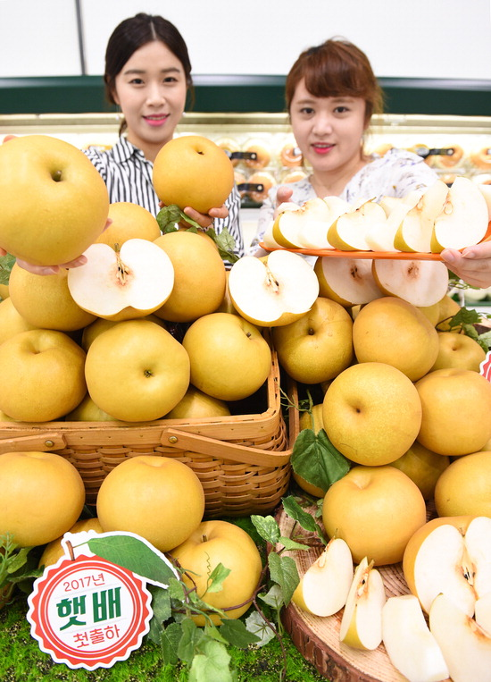 ▲ 10일 서울 서초구 농협하나로마트 양재점에서 모델들이 올해 첫 출하된 원황 햇배를 선보이고 있다. <사진=농협유통 제공>