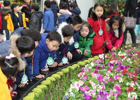 ▲ 부천식물원은 내일부터 &lsquo;이른 봄맞이 봄 꽃전시회&rsquo;를 열고 수선화, 이메리스 등 4000여 본의 꽃을 선보인다. <부천식물원 제공>