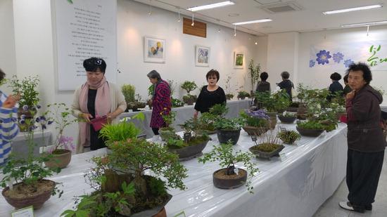▲ 여주 우리꽃 전시회가 여주시민회관에서 20일부터 열린다.