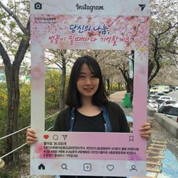 안양벚꽃축제.jpg