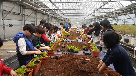 ▲ 남양주시 농기센터가 4일까지 &lsquo;도시농업 한마당&rsquo;을 진행한다. 사진은 지난해 프로그램에 참가한 지역 학생들.  <남양주농기센터 제공>