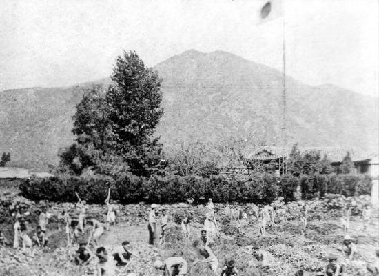 ▲ 일제강점기인 1919년 3월 계양면 황어마을 주민들이 일장기 아래에서 강제 노역을 하고 있다.<인천시 계양구 제공>