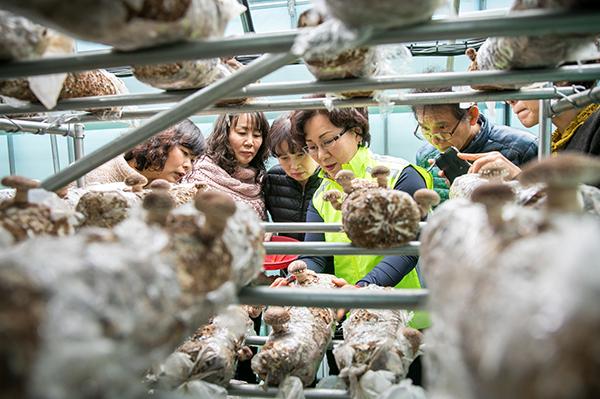 버섯재배전문가-양성.jpg