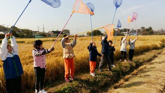 ▲ 지난해 친환경 벼농사 체험 프로그램에 참여한 어린이들이 잠자리 잡기에 열중하고 있다. <부천시 제공>
