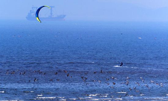 ▲ 초여름 더위와 함께 서해안 지역에 강한 바람이 분 22일 인천시 옹진군 선재도 앞 해변에서 한 관광객이 카이트 서핑을 즐기고 있다.  이진우 기자 ljw@kihoilbo.co.kr<br /><br />