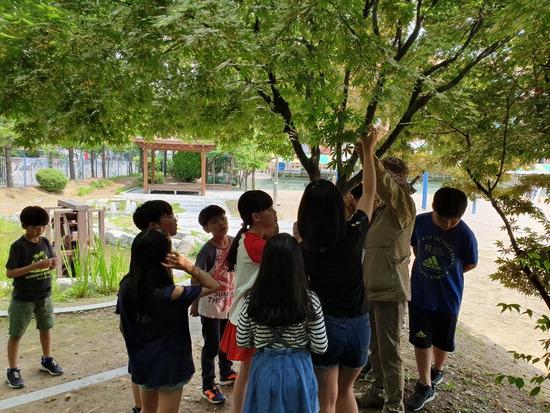 ▲ 수원 매현초등학교 학생들이 교내 생태체험 프로그램에 참여하고 있다.  <수원 매현초 제공>