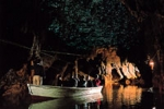 <오세아니아>와이토모 동굴