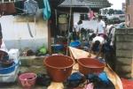 태풍피해지역 강원도에 위문,봉사활동