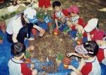 남양주시농업기술센터, 어린이 농사학습체험 실시