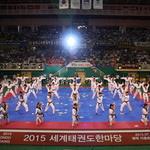 평택서 '세계 태권도한마당' 개막