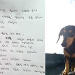 """최여진, 모친 기보배 욕설 논란에 사과 """"모든 분께 큰 상처 죄송"""""""