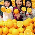 오렌지 향이 솔솔
