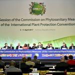 송도서 '국제식물보호협약 총회' 시작