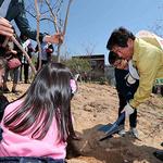 인천시 동구, '제72회 식목일 행사' 개최