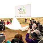 몽골 인천 희망의 숲 조성사업 벌써 10년