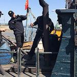 해경 특별경비단, 불법외국어선 선체구조 숙지 훈련 실시