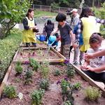 의왕시 '도시농부 체험' 추진 초중교 10곳서 전문강사 교육