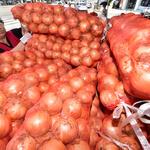 가뭄에 노지채소 가격 폭등 우려