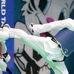 이대훈, 오늘 세계태권도선수권 68kg급 결승행 도전