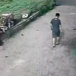 고양 일산 농가주택 상습 털이범 구속