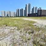 빚 갚아줘 얻은 땅… 못 팔게 하는 경제청