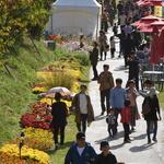 가을 축제 즐기는 시민들
