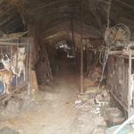 의왕시청 인근에 불법 개농장… 이제 와서 '즉각 조치'