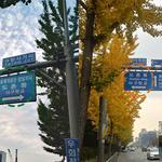 짝퉁 도로표지판 내건 민간업체… 1년간 꼼수 홍보