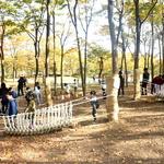 우리 아이 맘껏 뛰놀며 숲과 친해질 기회