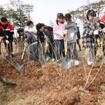 나무 심는 아이들