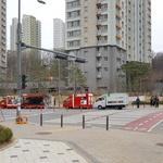 '불법 푸드트럭'에 손님 뺏겨 상인들 속타는데 단속은 하는둥 마는둥