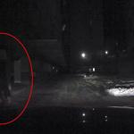 숨어 있다가 차량 오면 뛰어들어 9차례 보험금 가로챈 30대 구속