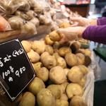 요즘 감자, 한파 피해 여파로 가격 세졌네…