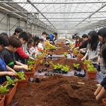 남양주농기센터서 '도시농업 한마당'