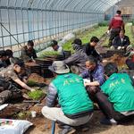 연천군 청산면, 색깔 있는 마을 만들기 사업 벌여