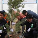 남양주시, 몽골 사막화 막을 '생명의 숲' 심다