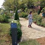 '삶의 휴식처' 당신의 정원은 어떤가요