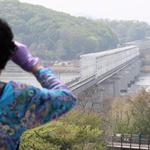 남북정상회담 효과 파주 DMZ 관광특수
