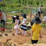 농법 공유하며 친목 도모까지… 도심 속 피어난 행복 녹색지대