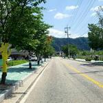 색색 옷 입은 나무들 손님맞이 한창 가평군 북면거리 위에 펼쳐진 '예술'