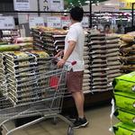 米친 상승세… 곡물값 역대 최대 고공행진