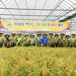 대왕님표 여주쌀 첫 벼베기 111일 만에 올 첫 햅쌀 수확