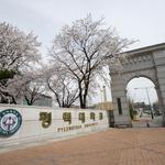 법원 결정은 '평택대 이필재 총장 체제'