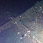 신일그룹, 울릉도에 침몰한 러시아 1급 철갑순양함 돈스코이호 113년 만에 해저에서 '대박'을