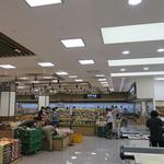 일산농협 로컬푸드직매장 3호점 개장