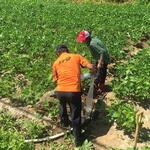 연천소방서 가뭄 피해우려 농촌지역에 급수지원