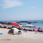 피서객 몰리는 바닷가, 해변-해수욕장 '안전'은 달라요